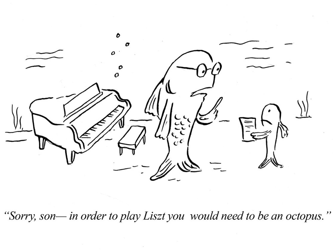 Liszt cartoon